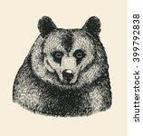 bear head. hand drawn design... | Shutterstock .eps vector #399792838