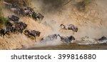 wildebeests are crossing mara...   Shutterstock . vector #399816880