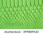 green snake scales macro...   Shutterstock . vector #399889420