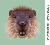 illustrated portrait of beaver. ... | Shutterstock . vector #399910378