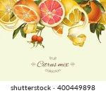 vector vintage citrus banner...   Shutterstock .eps vector #400449898
