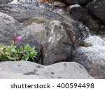 Clear Water Flowing To A Strea...