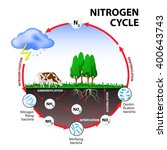 nitrogen cycle. | Shutterstock .eps vector #400643743