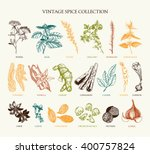 vector set of hand drawn spices ... | Shutterstock .eps vector #400757824