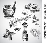 vector hand drawn herbs and... | Shutterstock .eps vector #400802140