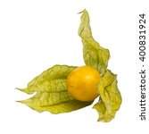 Physalis   Inca Berry Or Cape...