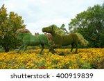 Horses mpsaiculture in dandelion