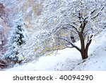 winter landscape | Shutterstock . vector #40094290