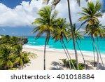 tropical beach on the caribbean ... | Shutterstock . vector #401018884