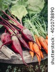 beets and carrots  farm... | Shutterstock . vector #401078890