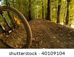 Concept photo of detail of bycycle wheel in forest dirty track - stock photo