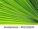 lines and textures of green... | Shutterstock . vector #401223634