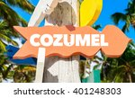 Cozumel Signpost With Palm Trees
