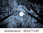 Night Mysterious Landscape In...