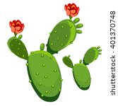 Blooming Prickly Pear Isolated...