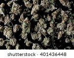 medical cannabis buds scattered ...   Shutterstock . vector #401436448