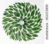 vintage watch on green leaves... | Shutterstock . vector #401472850