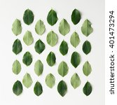 green leaves pattern on white... | Shutterstock . vector #401473294