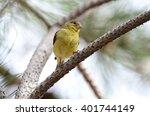 southwest usa beautiful pale... | Shutterstock . vector #401744149