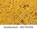 yellow mango stir well  then... | Shutterstock . vector #401754106