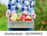 beautiful young woman picking... | Shutterstock . vector #401904943