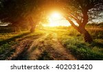 Rural Road At Sunset In The...