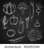farm tomato  zesty radish and... | Shutterstock .eps vector #402052540