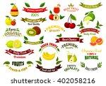 fruits design elements for... | Shutterstock .eps vector #402058216