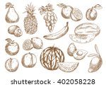 farm harvested oranges and... | Shutterstock .eps vector #402058228