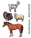 Farming  Pets  Set Of Cattle...