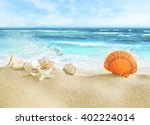 tropical beach with shells. | Shutterstock . vector #402224014