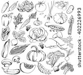 vegetables doodle set. big... | Shutterstock .eps vector #402226993