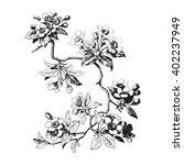 hand drawn sakura branch....   Shutterstock .eps vector #402237949