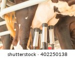 cow milking facility and... | Shutterstock . vector #402250138