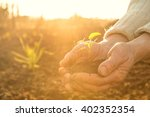old peasant hands holding a... | Shutterstock . vector #402352354
