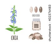 superfood chia set in flat...   Shutterstock .eps vector #402376483