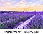 lavender field summer sunset... | Shutterstock . vector #402397480