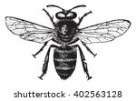 Honey Bee  Vintage Engraved...