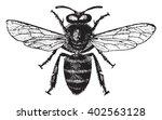 Honey Bee  Vintage Engraved...