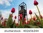 tulips in bloom at the... | Shutterstock . vector #402656344