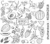 berries doodle set. big... | Shutterstock .eps vector #402842818