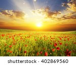 field with green grass and red... | Shutterstock . vector #402869560