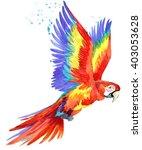 Parrot. Watercolor Parrot...