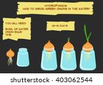 instructions for growing fresh... | Shutterstock .eps vector #403062544