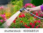 watering garden flowers with... | Shutterstock . vector #403068514