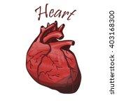human heart | Shutterstock .eps vector #403168300