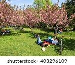 bucharest  romania   april 09 ... | Shutterstock . vector #403296109