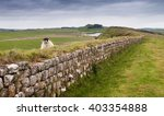 A Ewe Peering Over Hadrian's...