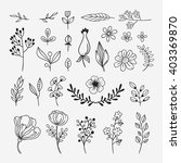 hand sketched plants and... | Shutterstock .eps vector #403369870