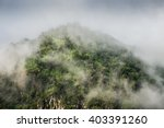 mountain peak  forest and... | Shutterstock . vector #403391260